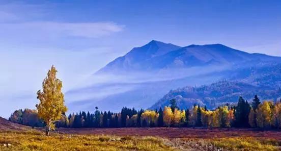 自驾皮卡,在中国秋色最美的地方打卡是种怎样的体验?