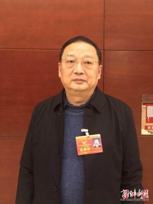 武汉代表委员建议:公务车应带头使用新能源