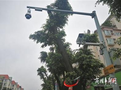 东莞增设一批电子警察 主查货车闯禁区