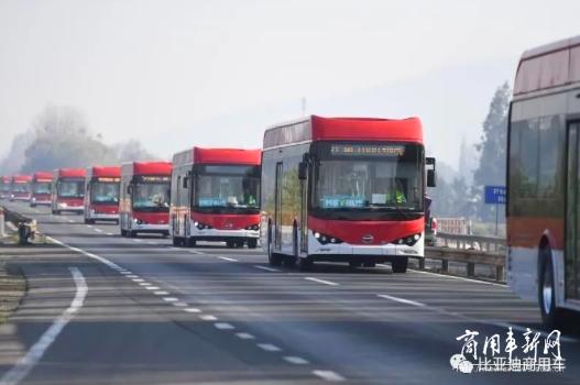 市占率达65%!智利新增150台比亚迪纯电动大巴