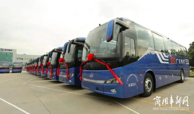 """可信赖""""伙伴"""",广州交通旅行社喜迎30辆金龙纯电通勤大巴"""
