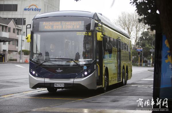 """比亚迪首台BYD ADL Enviro200EV XLB纯电动大巴驶入""""风帆之都""""新西兰"""